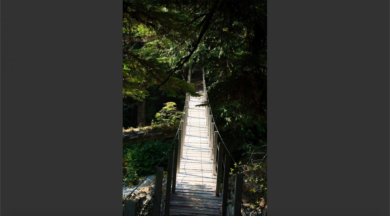 Lodge, Lodge, Listing ID 2332, Clayoquot Sound, Alberni-Clayoquot Regional District, Vancouver Island, British Columbia, Canada,